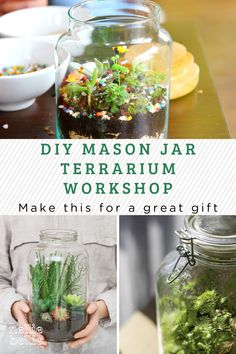 This is a hands on workshop building a terrarium using a classic mason jar – a perfect home for your new succulent. A terrarium is an easy and fun way to bring the beauty of nature inside your home! Join us to make yours today. Terrarium Workshop, Build A Terrarium, Mason Jar Terrarium, Mason Jar Diy, Pretty Room, Furniture Layout, Diy Ideas, Succulents, Great Gifts