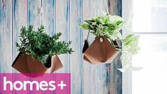 Are you a fan of flowers and plants? Scroll down through the photos and see these 16 clever DIY Hanging Planters That Will Fascinate You. Jardin Vertical Diy, Vertical Garden Diy, Diy Hanging Planter, Hanging Flower Pots, Diy Crafts For Home Decor, Diy Arts And Crafts, Unusual Flowers, Different Flowers, Pinterest Diy Crafts