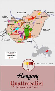 Hungarian wines and