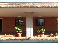chiliile mănăstirești. foto: ©vladimir bulat, iunie 2015