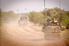 NLD in Gao / Mali