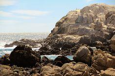guia de viagem chile valparaiso vina del mar borboletas na carteira-10