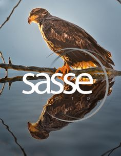 Gallery for Christian Sasse | Sasse Photography