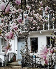 Nothing Hill, London | England