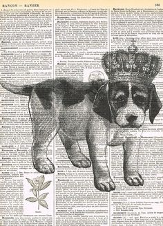 Dog.puppy,Crown,Antique Book Page.King/Queen,animal,French text,Pairs.deal.deco.BIRTHDAY.child.art.pet.mixed media.altered.handmade By Jackie @jackieabassett