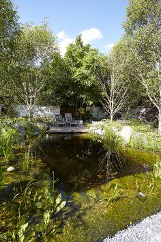 Teichanlage wunderschön gebaut und bepflanzt von Rheingrün.