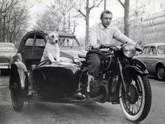 Jean Pierre Talbot, alias Tintin (et Milou)
