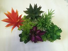 Set of 9 Different Succulents, Artificial Cactus Plants -- Click image to review more details.