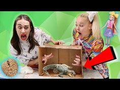 WHAT'S IN THE BOX CHALLENGE W/ MIRANDA SINGS!! *live animals* - YouTube