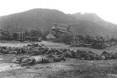 1st Cavalry Division History - Vietnam War, 1965 - 1972