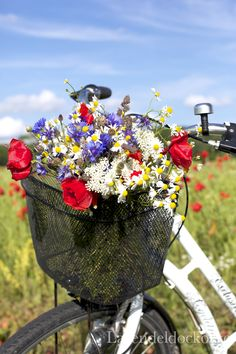 Red, white, and blue flowers on a white bike Bike Planter, Petal Pushers, Felder, Old Bikes, Vintage Bikes, Flower Basket, Container Gardening, Flower Power, Beautiful Flowers