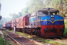 The train tours in Sri Lanka would be amazing to experience.