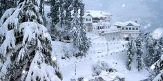 Know the Reason of Popularity behind the Top 5 Indian #HillStations