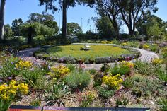 Floral clock at Kings Park Spring festival sami's colourfulworld