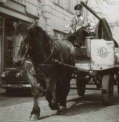 Utrecht, Amsterdam, Van, Trucks, Horses, Times, History, Animals, Shopping