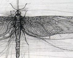 Birds at Noon — hideback: Lanfranco Quadrio(Italian, . Intaglio Printmaking, Collagraph, Ink Illustrations, Illustration Art, Etching Prints, Organic Art, Dragonfly Art, Insect Art, Encaustic Painting
