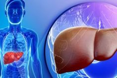 As mentioned in the name it is a chronic disease which affects the liver disabling it from its functions. Here the disease affects the normal cells in the liver Liver Cancer, Liver Disease, High Liver Enzymes, Le Psoriasis, Health Options, Health Tips, Health Facts, Gut Health, Health Care