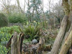 Bois flotté au jardin du Gès du temps à Lithaire dans la Manche en Normandie