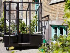 /\ /\ . Urban Greenhouse