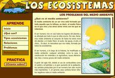 LOS ECOSISTEMAS :: JUGANDO Y APRENDIENDO
