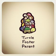 Turtle Foster Parent