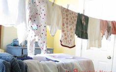 Stendere i panni in casa. Ecco le muffe che attentano alla salute Se per tutto linverno avete steso i panni umidi in casa a quanto pare non è stata la scelta giusta