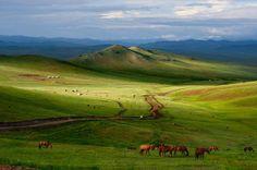 Mongólia, paisagem, natureza