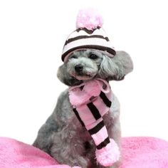 Pet Winter Accessories - Rainbow Striped Hat, Scarf and Socks. For small dog and Cats