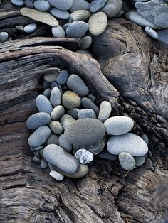 Sea Witch: ~ Stones and driftwood. Pebble Stone, Stone Art, Rock And Pebbles, Sea Witch, Kiesel, Beach Stones, Beach Rocks, Sticks And Stones, Patterns In Nature