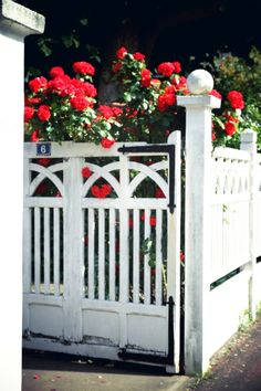 Charming flowers and fences.