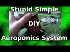 #40 - Hydroponics vs Aeroponics vs Soil Growing Systems - YouTube