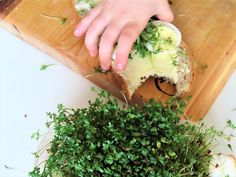 Cress & egg Cress, Avocado Toast, Activities For Kids, Egg, Breakfast, Food, Composters, Eggs, Morning Coffee