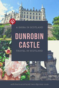 Visit Dunrobin Castle in Scotland North Coast 500, Princess Palace, Shiba, Scotland, Castle, Posts, Disney Princess, Movie Posters, Travel