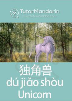 """Unicorn is a legendary creature that has been described since antiquity as a beast with a single large, pointed, spiraling horn projecting from its forehead. National Unicorn Day is celebrated on 9th April of every year.  Let's learn the translation word for """"unicorn"""" in #Chinese.  #NationalUnicornDay #unicorn #legendary #mythological #creature #learnchinese #オンライン #Mandarin #learnmandarin #chineselanguage"""