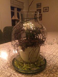 Vintergæk i glasbowle