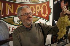 """""""La uva Vinalopó es todo para mi"""" Antonio Berná, vicepresidente del C.R.D.O. Uva Embolsada del Vinalopó    #uva #grape #embolsada #vinalopo #spain #alicante #natural"""