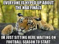 ....or just watch the thugs play a game that doesn't look like basketball, anymore. Also,this is my life !