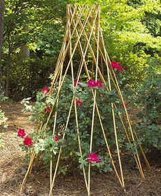 Willow flower support