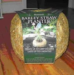 """Barley Clear Planters Small, 7-1/2"""" dia x 6"""" high by SUMMIT RESPONSIBLE SOLUTN. $17.84. Size - 1500 GALLON. Barley Straw. Improve your water quality wit this attractive, floating planter. Barley straw planters act as a natural filter, keeping the water in your pond clean and clear. Will not harm fish or plants, treats pond for 6 months. No danger of koi nibbling. Plant houseplants or other non submersible species in planter and release in pond."""