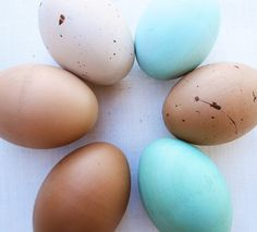 Wooden eggs- heritage breed chicken eggs- eco friendly- Waldorf toy