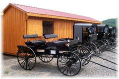 amish buggies for sale