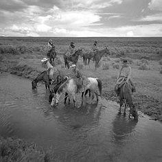 The Last Cowboys by Adam Jahiel   Retronaut