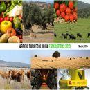 Estadísticas 2013 de la Agricultura Ecológica en España ecoagricultor.com