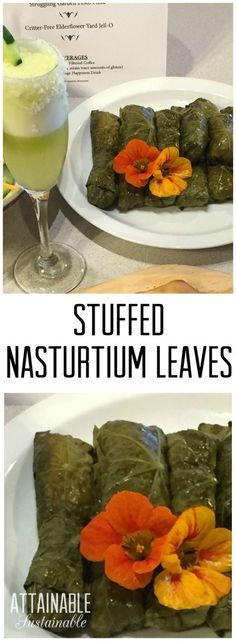 How about a little something *different for your next special occasion? These stuffed nasturtium leaves are a forager's dream and the recipe is incredibly flexible. Find out how to make them!