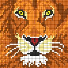 ces un lion vu de très prés avec les yeux jaune                              …