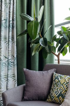 Beautiful green corner inspiration for your home. Improve Yourself, Finding Yourself, Green Curtains, Home Decor Inspiration, Pastel, House Design, Concept, Throw Pillows, Interior Design