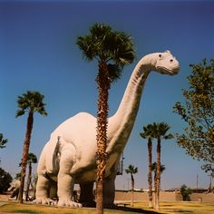 Yes, we have dinosaurs. Cabazon, California.  Total kitsch roadside attraction.....Interesting to say the least.
