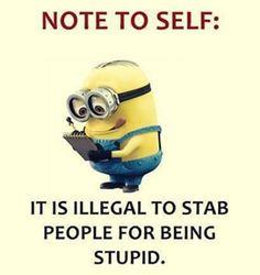 Minion Humour, Funny Minion Memes, Minions Quotes, Funny Jokes, Hilarious, Funny Logic, Minions Minions, Evil Minions, Citation Minion