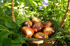 oua vopsite natural Onion, Easter, Vegetables, Onions, Easter Activities, Vegetable Recipes, Veggies