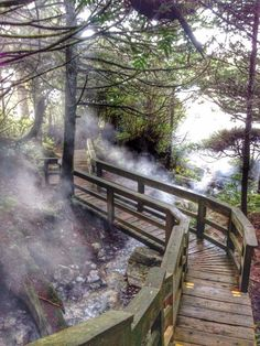 hotspring cove tofino vancouver island..Canada ~Ive been here, BUT I WANT TO GO AGAIN THAT RAIN FOREST WAS PERFECT AND THE ISLAND WAS PERFECT AND EVERYTHING WAS PERFECT